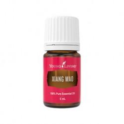 Xiang Mao