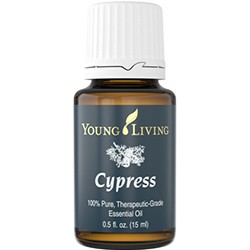 Ciprés común 15 ml